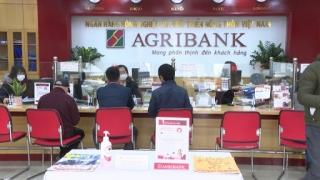 Agribank cơ cấu lại nợ cho 15 ngàn khách hàng bị ảnh hưởng dịch Covid-19