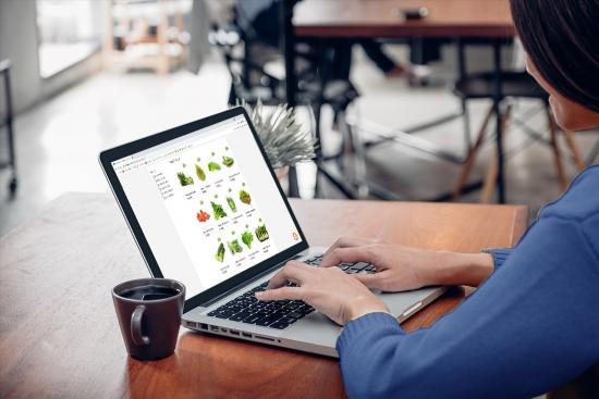 Mở thẻ tín dụng online giải pháp tài chính đúng thời điểm từ Bản Việt