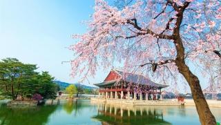 Khám phá Hàn Quốc cùng thẻ tín dụng VIB