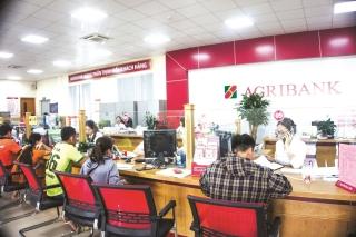 Agribank - kênh thanh toán dịch vụ công quốc gia