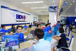 Vay sản xuất kinh doanh với lãi suất từ 6,5%/năm cùng BIDV